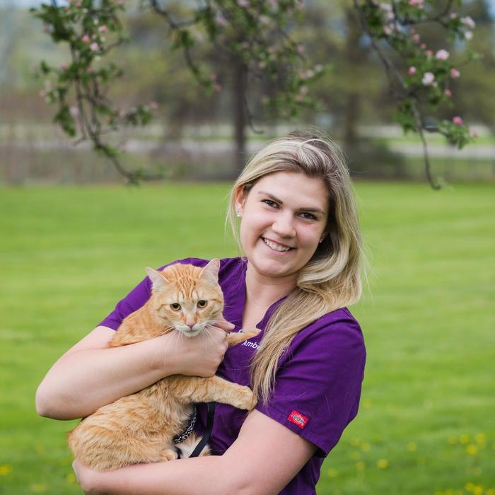Amber Laibe </br> Licensed Veterinary Technician photo