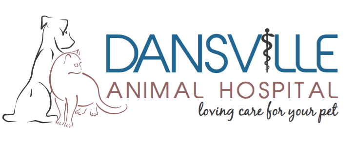 Dansville Animal Hospital logo